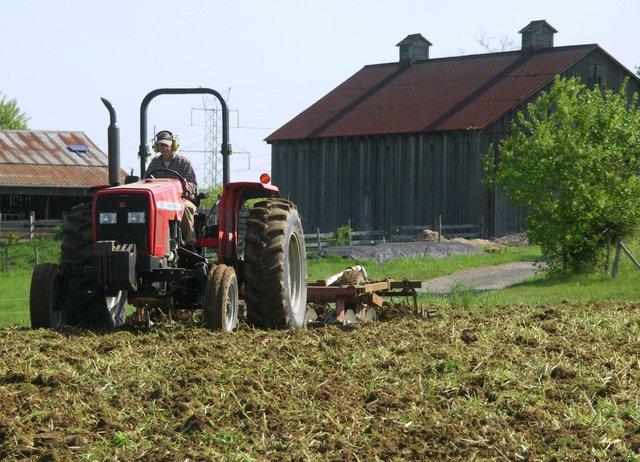 Дрібні фермери не можуть отримати кредит від держави