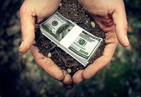 Скільки коштуватиме гектар землі у майбутньому