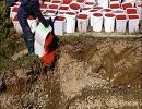 У Росії нещадно знищили 4 тонни червоної ікри (фото)