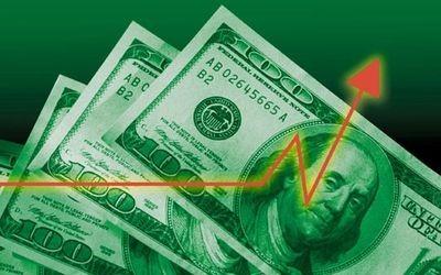 Долар підскочив до 8,74 гривні
