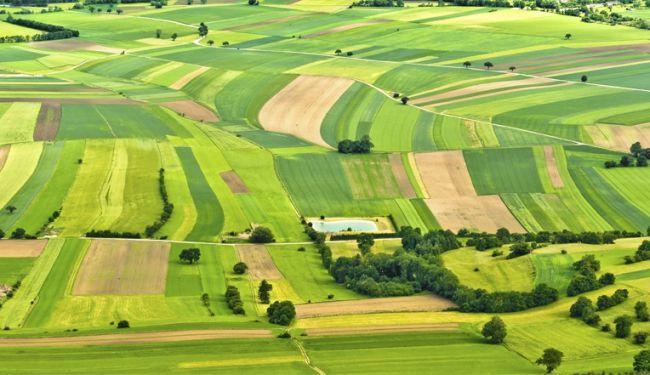 Державна реєстрація земельних ділянок стане безкоштовною
