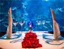 Підводний ресторан в Дубаї (Фото)