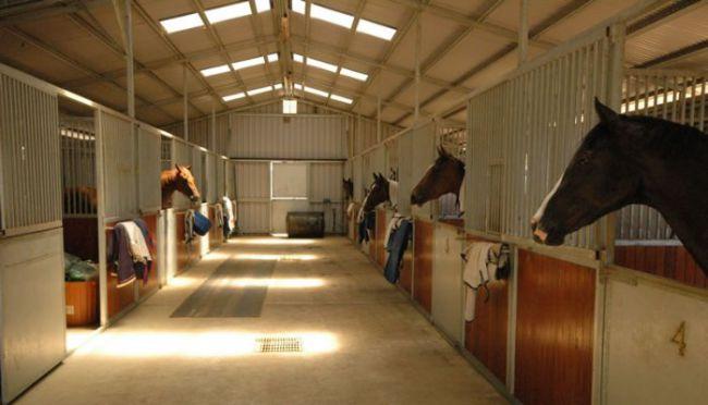 Быстровозводимое здание конюшни от компании Витон (Viton)