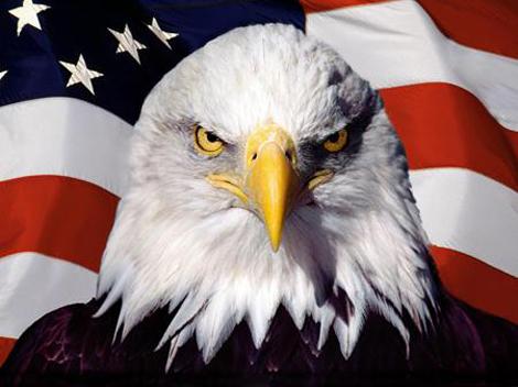 usa_flag_eagle.jpg (131.22 Kb)